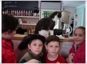 Kočka Barunka a my